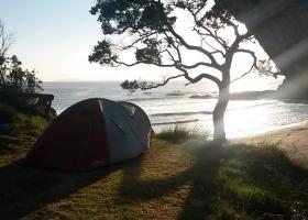 Motutara Barrons Camping Whananaki (11)